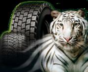 Продам шины для грузовиков новые и наварные из германии