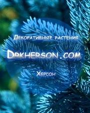 Декоративные растения Херсон
