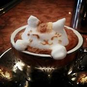 Ценителям хорошего кофе посвящается. Курс Бариста. Твой Успех