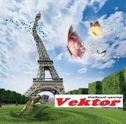 Photoshop. Образовательные курсы в Херсоне