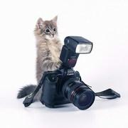 Обучение в Херсоне. Курсы фотографа. Учебный центр Vektor.
