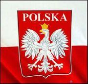 Курсы польского языка в учебном центре Твой Успех. Новая Каховка