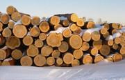 Купить дрова оптом в Херсоне и Херсонской области.