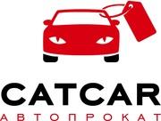 Автопрокат CATCAR. Работаем в Херсоне и Николаеве