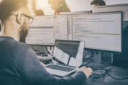 IT специалисты (разработчики JAVA) в Голландии