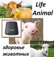 Устройство для лечения животных Life Animal.