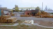Продам деревообрабатывающее предприятие в Херсоне.
